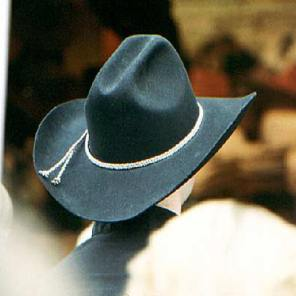 018_cowboy-cat-in-the-crowd