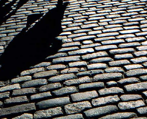 048_paved-road-shadows