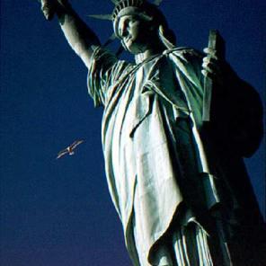 067_liberty&seagull