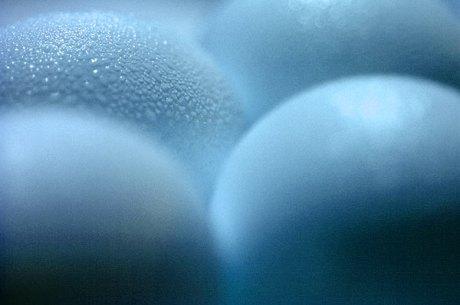 034_eggs
