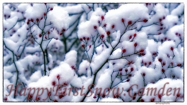 Eman_snow