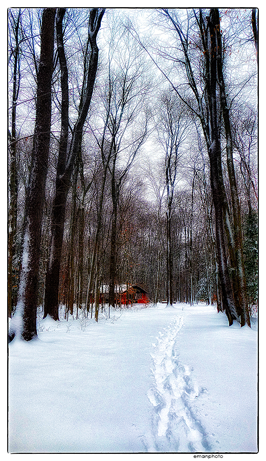 emanphoto_winter_008