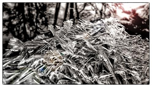 emanphoto_winter_frostyshore