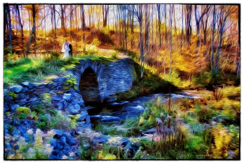 DSCF0892_Stone_Bridge_Van Gogh_Nik_1920