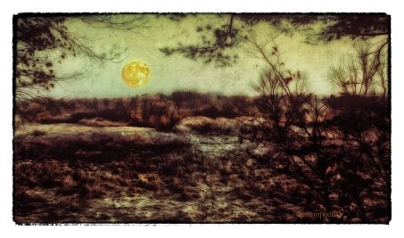 DSC01185_The_Moon_And_The_Frost_After_Nearly_an_Hour_Borders