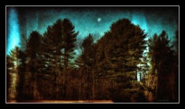 DSC01267_Simply_Put_The_Moon_Borders