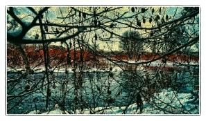 DSC01297_River_Through_The_Vine_Borders