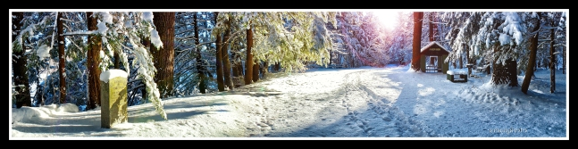 DSC01521_Fathers_of_Forest_Park_Snow_Pano_Borders