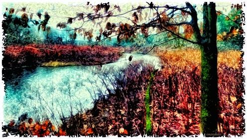 P1590147_L'arbre_Et_La_Rivière_Polaroid_Transfer