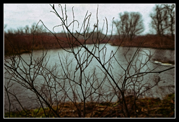 P1590173_Saison_Morte_Borders