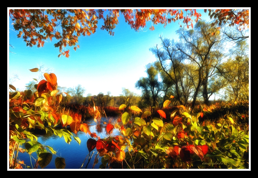DSC_2044_The_Orange_Leaves_by_The_River_Borders