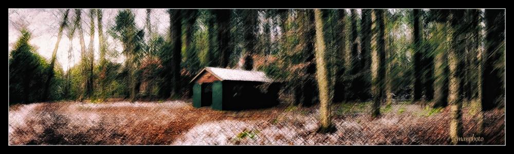 DSC00979_Frank_Harden_Pavilion_Borders