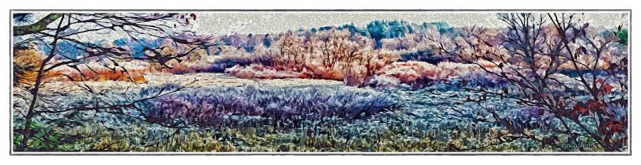 DSC01179_Sunrise_On_The_Bocage_Filtered_Borders