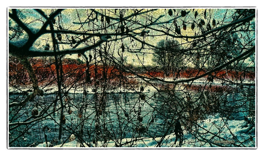 DSC01297_River_Through_The_Vine_Borders.jpg