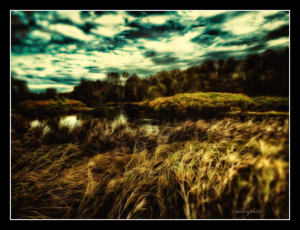 P109021_Hautes_Herbes_Couchées_Vers_La_Rivière_Midnight