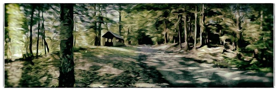 P1050410_Long_House_Pavilion_Forest_Park