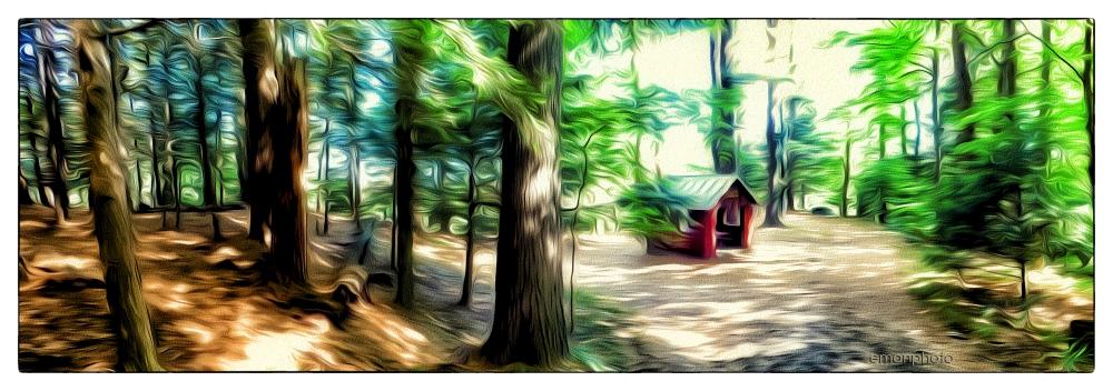 P1050855_Unnamed_Pavilion_Forest_Park.jpg